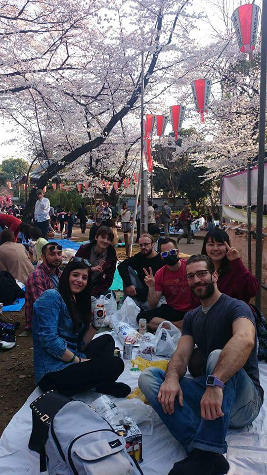 fioritura dei fiori di ciliegio in Giappone: Tokyo